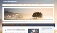 Website Template - Last Trip